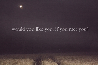 would-you-like-you-if-you-met-you